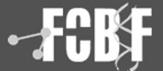 fbioyf-logo